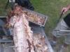 big-roast-hog-roasts-july-2009-042