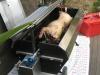 big-roast-lamb-roast-29062009-004