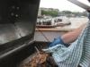Hog roast spit roast thames leisure