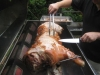 big-roast-hog-roasts-july-2009-031