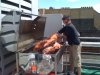 hog-roast-london
