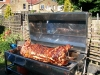 how-to-cook-a-hog-roast-4